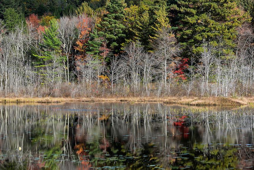 Scenic autumn landscape, Jaffrey, New Hampshire, USA