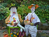 Colorful fall scarecrows dressed for harvest dinner, Yarmouth Community Garden, Maine, USA