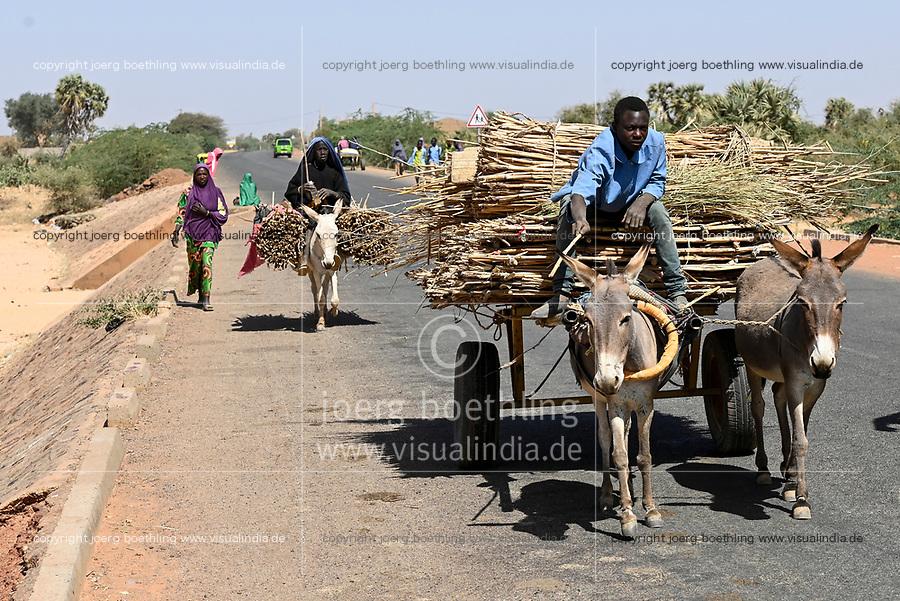 NIGER, village Namaro, rural transport, people go to the market by donkey cart / Dorf Namaro, Transport zum Markt
