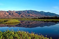 Kealia Pond reflects the West Maui Mountains on a calm day, Maui.
