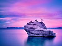 Bonsai tree on boulder with sunrise. Lake Tahoe, Nevada