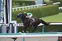 Horse Racing : Kobe Shinbun Hai 2019