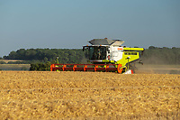 15-7-2021 Harvest gets underway in Lincolnshire Ireland's Farms Ltd harvest Electron Winter barley for seed at 15.2% Moisture <br /> ©Tim Scrivener Photographer 07850 303986<br />      ....Covering Agriculture In The UK....