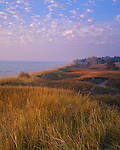 Kohler-Andrae State Park, WI: Rolling grass covered dunes and distant pine forest on the Lake Michigan shoreline