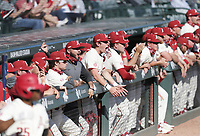 Arkansas players cheer, Saturday, April 3, 2021 during the eighth inning of a baseball game at Baum-Walker Stadium in Fayetteville. Check out nwaonline.com/210404Daily/ for today's photo gallery. <br /> (NWA Democrat-Gazette/Charlie Kaijo)