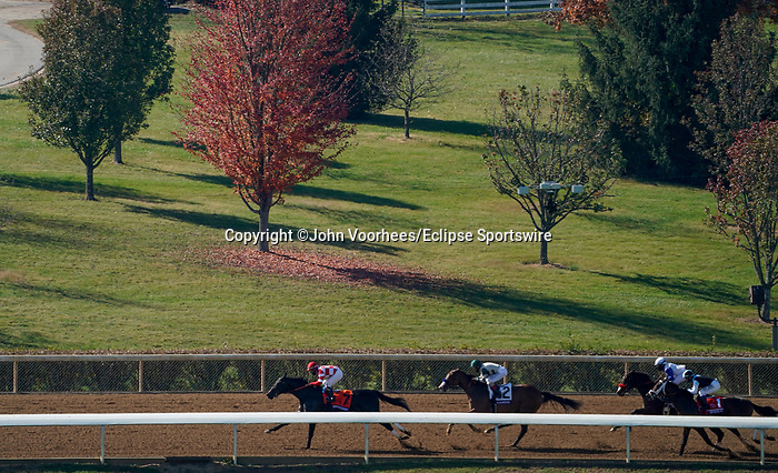 November 7, 2020 : Gamine, ridden by John Velazquez, wins the Filly & Mare Sprint on Breeders' Cup Championship Saturday at Keeneland Race Course in Lexington, Kentucky on November 7, 2020. John Voorhees/Breeders' Cup/Eclipse Sportswire/CSM