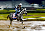 April 29, 2021: Travel Column, trained by trainer Brad Cox, exercises in preparation for the Kentucky Oaks at Churchill Downs on April 29, 2021 in Louisville, Kentucky. Scott Serio/Eclipse Sportswire/CSM