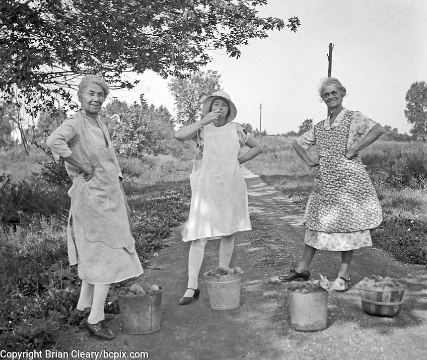 Three woman in aprons with baskets of freshly picked peaches, circa 1930's.   (photo: www.bcpix.com)