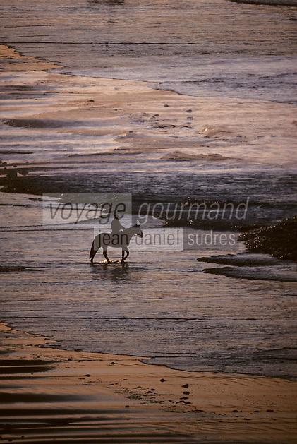 Europe/France/Bretagne/22/Côtes-d'Armor/Sable-d'Or-les-Pins: Cavalier sur la plage