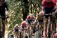 Mathieu Van der Poel (NED/Alpecin-Fenix) up the Kemmelberg<br /> <br /> 82nd Gent-Wevelgem in Flanders Fields 2020 (1.UWT)<br /> 1 day race from Ieper to Wevelgem (232km)<br /> <br /> ©kramon
