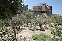 2011 Mokattam Garbage City (alla periferia del Cairo) il quartiere copto dove si vive in mezzo alla spazzatura raccolta: un terreno piuttosto secco con alberi da frutta. Dietro palazzi nuovi.