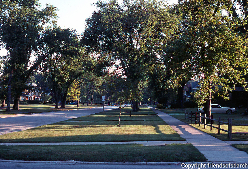 River Forest:  Typical street. Photo '78.