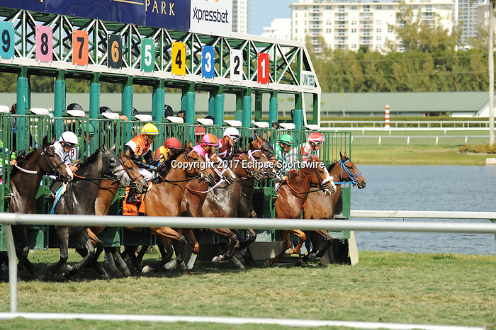HALLANDALE BEACH, FL - APRIL 01: Sanibel Island Stakes on Florida Derby Day at Gulfstream Park on April 01, 2017 in Hallandale Beach, Florida. (Photo by Carson Dennis/Eclipse Sportswire/Getty Images)