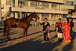 SHINAGAWA,JAPAN-JANUARY 25: One Millionth,ridden by Keita Tosaki, after winning the TCK Jo-o Hai at Ohi Racecourse on January 25,2017 in Shinagawa,Tokyo,Japan (Photo by Kaz Ishida/Eclipse Sportswire/Getty Images)