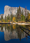 Yosemite National Park, California<br /> El Capitan reflected in stilll pool at Cathedral Beach, Yosemite Valley