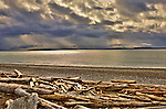 The beach at Eb\ey's Landing National Historic Preserve provides spectacular views across Admiralty Inlet.  The Olympic Penninsula hides under snow showers in the background. Olympic Peninsula