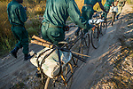 Anti-poaching scouts with confiscated spears, bicycles, and snares, used by poachers, Kafue National Park, Zambia