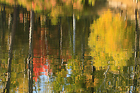 """Impressions of Autumn""<br />