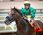 DEL MAR, CA: July 24: #7 Campaign with jockey Rafael Bejarano after their victory in the Grade III Cougar II Handicap at Del Mar Thoroughbred Club on July 24, 2019 in Del Mar, California (Photo by Chris Crestik/Eclipse Sportswire)
