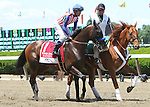 June 7, 2014: Bareyn with Gary Stevens win the Grade II Woody Stephens Stakes for 3-year olds, going 7 furlongs at Belmont Park. Trainer: Bob Baffert. Owner Kaleem Shah, Inc.: . Sue Kawczynski/ESW/CSM