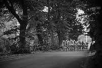 peloton through the woods<br /> <br /> 1st Brussels Cycling Classic<br /> Brussels - Brussels: 197km