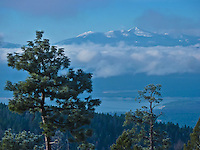 The Purcell Mountains and the West Kootenai peek above the clouds as Lake Koocanusa is seen below. A perfect landscape photo of the northwest Montana landscape.