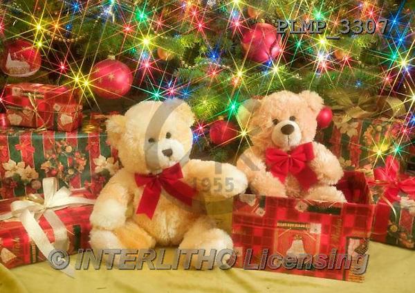 Marek, CHRISTMAS ANIMALS, WEIHNACHTEN TIERE, NAVIDAD ANIMALES, teddies, photos+++++,PLMP3307,#Xa# under Christmas tree,
