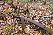 Artifacts (parts from a logging sleigh) at logging Camp 7 of the abandoned Sawyer River Railroad in the New Hampshire White Mountains town of Livermore. This railroad was a 10-mile long logging railroad that was in operation from 1877-1928. These are protected artifacts, and the removal of historical artifacts from federal lands without a permit is a violation of federal law.