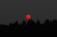 """RED DOT SUNSET""<br />