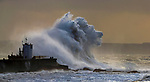 "Pictured:  The waves forming the shape of a wolf<br /> <br /> A sea horse, wolf and lion appeared in blasts of spray as huge waves crash against a pier.  As the storm raged, giant walls of water battered the coastline and erupted in clouds above the pier, forming shapes of animals in the mist.<br /> <br /> Stephen Grant, 60, who lives in Porthcawl, Wales, with his wife Kath, caught all the images on the same morning in the seaside town.  He said: ""Storms occur throughout the year especially when the winds are blowing south-south westerly with gusts reaching up to 30mph to 40mph that cause big swells, throwing the waves over the pier, peaking at times to 20ft to 30ft high.  SEE OUR COPY FOR DETAILS.<br /> <br /> Please byline: Stephen Grant/Solent News<br /> <br /> © Stephen Grant/Solent News & Photo Agency<br /> UK +44 (0) 2380 458800"