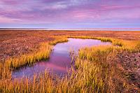 Barter Island, Kaktovik, arctic sunset over tundra pond.