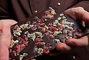 21/09/11 - ISSOIRE - PUY DE DOME - FRANCE - Romuald REMY, Maitre chocolatier - Photo Jerome CHABANNE