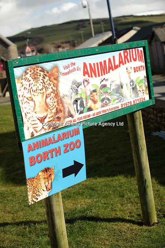 COPY BY TOM BEDFORD<br /> Pictured: Animalarium in Borth near Aberystwyth, Wales, UK<br /> Re: Dyfed-Powys Police has today been made aware that sometime over the last five days a female lynx has escaped from the Animalarium in Borth. Police are therefore advising public in the area to be alert and vigilant.<br /> The lynx is unlikely to approach people, but may attempt to take livestock or pets as food.<br /> We do however advise that the animal should not be approached as it could become aggressive if cornered. It is believed that the lynx remains in fairly close proximity to the Animalarium, but of course it could potentially go further afield.<br /> Any sightings should be reported by calling 101, or if the lynx is in the process of taking an animal, or appears caught or injured, then please call 999.