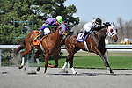 27 March 2010: Silver Time with John McKee up take the lead in deep stretch on the way to winning the Queen Stakes at Turfway Park in Florence, Kentucky.
