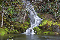 Small waterfalls on Quartzville Creek National Wild and Scenic River.