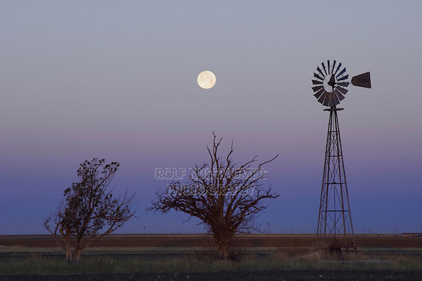 Windmill at sunrise with Full Moon, Canyon, Panhandle, Texas, USA, February 2006