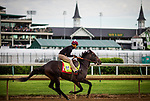LOUISVILLE, KY - MAY 03: Mccraken gallops in preparation for the Kentucky Derby at Churchill Downs on May 03, 2017 in Louisville, Kentucky. (Photo by Alex Evers/Eclipse Sportswire/Getty Images)