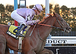 6 March 2010: Awesome Act and jockey Julien Leparoux win The Gotham at Aqueduct Racetrack in Ozone Park NY.