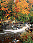 Pattison State Park, WI<br /> Small falls on the Black River with grasses and hardwood forest in fall color