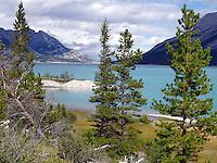 Beautiful vantage of Abraham Lake, west of Nordegg, Alberta.