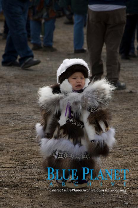 inupiat child at the spring Nilugatuk event, celebrating the end of a successful whaling season, Barrow, Arctic Alaska, USA
