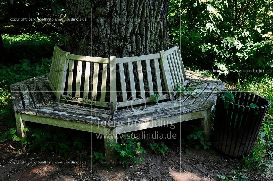 GERMANY, landscape park Dessau Woerlitz, forest / Deutschland, Kulturstiftung und Gartenreich Dessau-Woerlitz in Sachsen-Anhalt, Auenwald, alte knorrige Eiche und Sitzbank