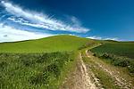 Farm roads and section roads wind throughout the beautiful Palouse landscape.  Palouse Hills, Washington State.