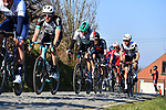 The peloton gives chase on Oude Kwaremtont during the 73rd edition of Kuurne-Brussel-Kuurne 2021 running 197km from Kuurne to Kuurne, Belgium. 28th February 2021  <br /> Picture: Serge Waldbillig | Cyclefile<br /> <br /> All photos usage must carry mandatory copyright credit (© Cyclefile | Serge Waldbillig)