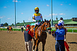 TORONT,CANADA-SEP 14: Yorkton,ridden by Patrick Husbands, after winning the Bold Venture Stakes at Woodbine Race Track on September 14,2019 in Toronto,Ontario,Canada. Kaz Ishida/Eclipse Sportswire/CSM