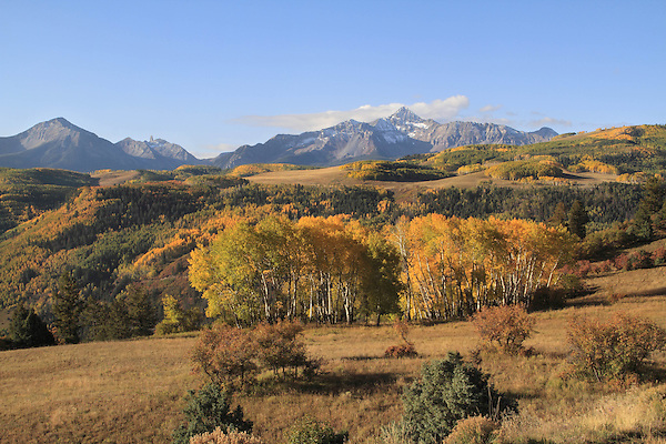 Sunshine and Wilson Peaks with aspen trees in fall foliage,  San Juan Mountains near Telluride, Colorado, USA.