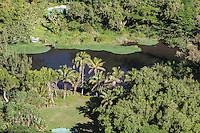 View of Waipi'o River and farmlands in Waipi'o Valley, Big Island.
