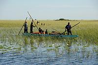 ZAMBIA Barotseland, Mongu, people travel by boat to Mulamba harbour at river Zambezi / SAMBIA Barotseland , Stadt Mongu , Menschen mit Boot in der Flutebene des Zambezi Fluss