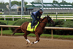LOUISVILLE, KY - APRIL 28: Fellowship (Awesome of Course x Go Girlfriend Go, by Demidoff) gallops with rider Brian O'Leary at Churchill Downs, Louisville KY. Owner Jacks or Better Farm Inc., trainer Mark Casse.(Photo by Mary M. Meek/Eclipse Sportswire/Getty Images)