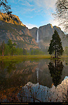 Yosemite Falls and Leidig Meadow Fir Reflected at Dawn, Spring Flood in Leidig Meadow, Yosemite National Park